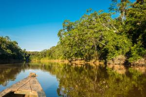 boat-river-peruvian-amazon-jungle-madre-de-dios-peru-49129545